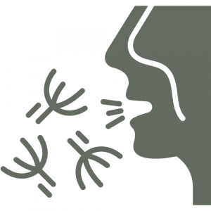 Allergie über die Atemwege